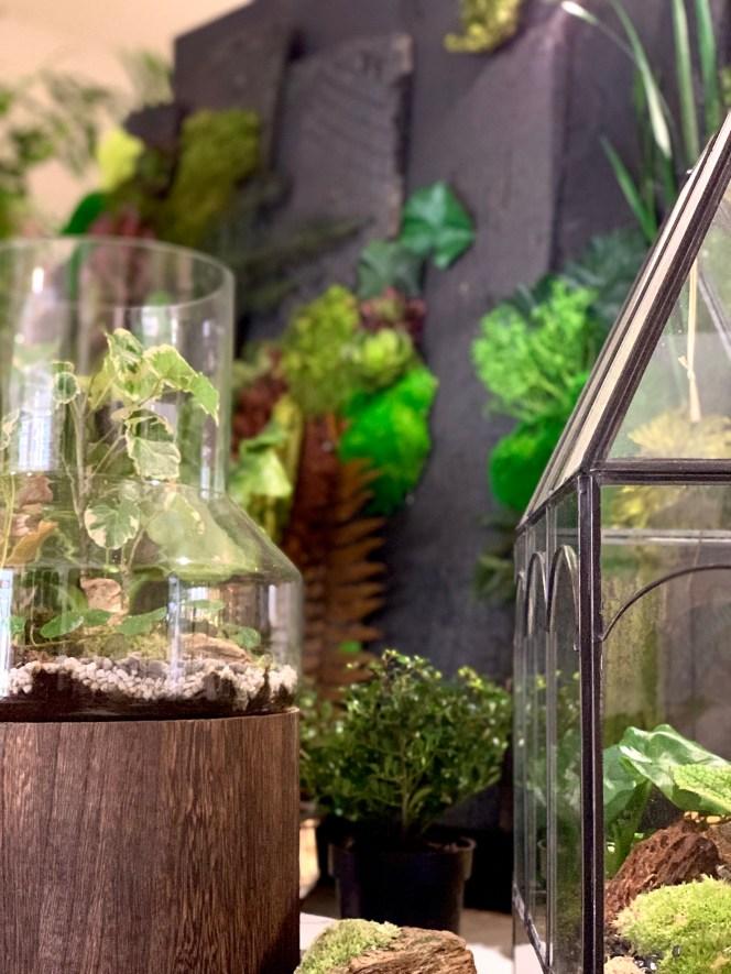 terrarium et serre Kokenendo