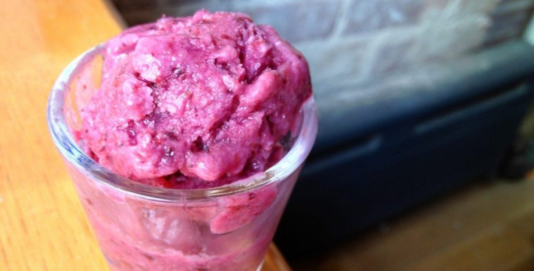 Frozen Blueberry Yogurt