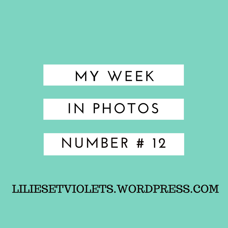My Week in Photos #12