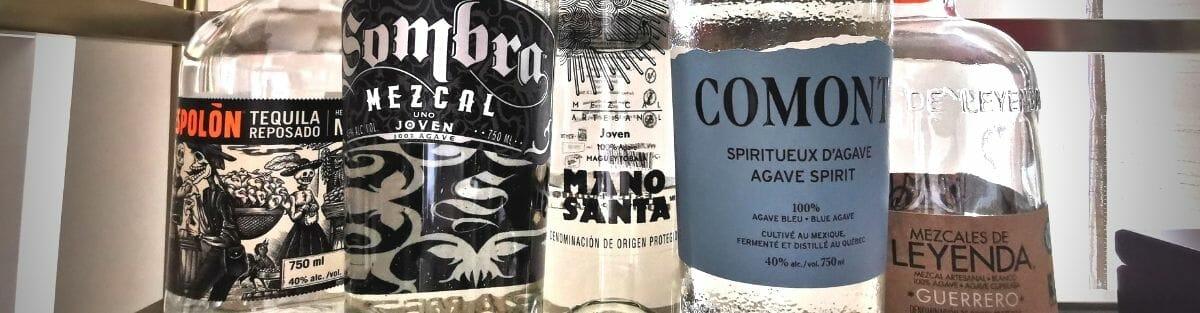 blogue cinco de mayo - mezcal tequila comont