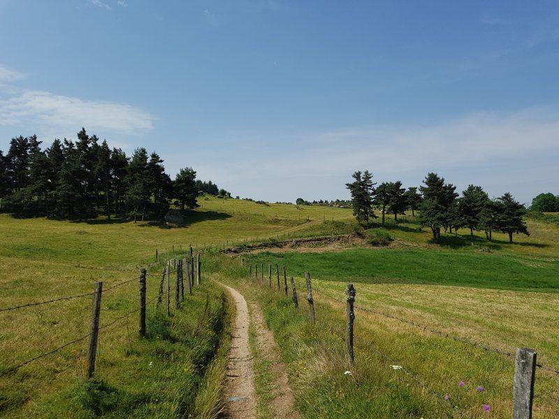 Compostelle : Monistrol d'Allier – Saugues