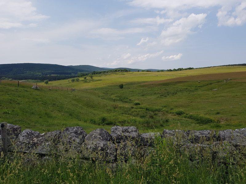 Compostelle : Saugues – Domaine du Sauvage