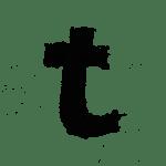 Blog lili et la vie auteur T