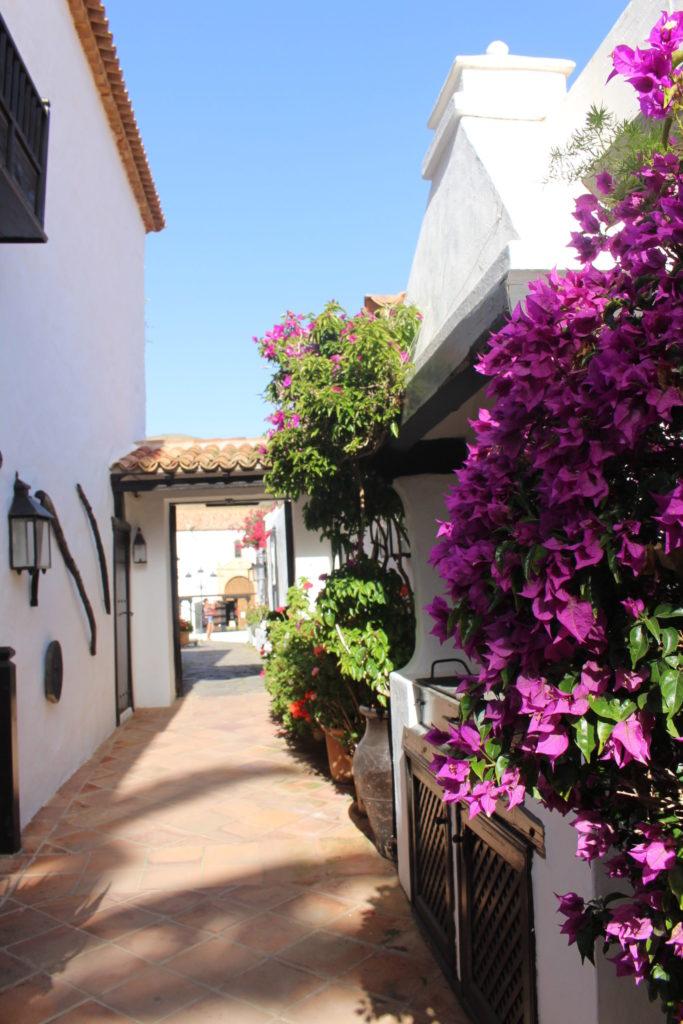 Ruelle betancuria Fuerteventura