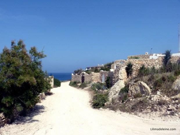 Lampedusa dammusi