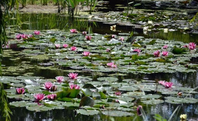 Giverny Monet casa