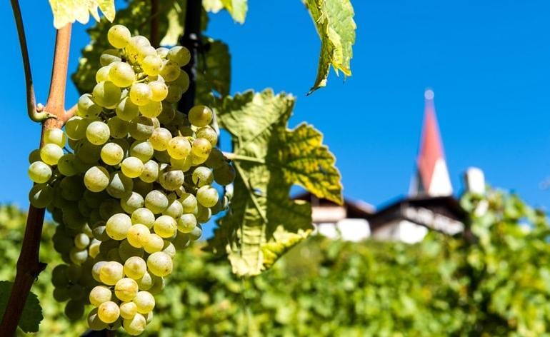 Strade del Vino Trentino Chiusa