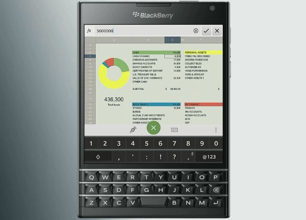 bb passport sheet