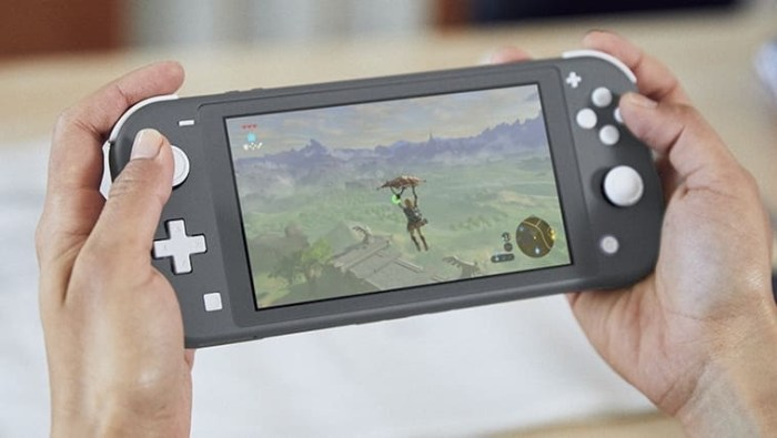 Nintendo Switch Lite handheld game console coming in