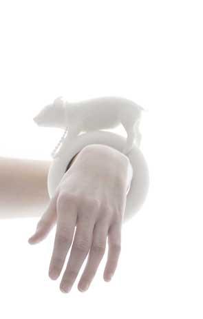 PigBraceletDetailsmall