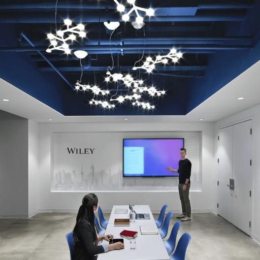 Wiley Publishing