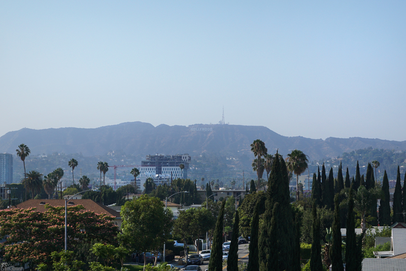 """Our hotel room view, """"Hollywood Historic Hotel"""""""