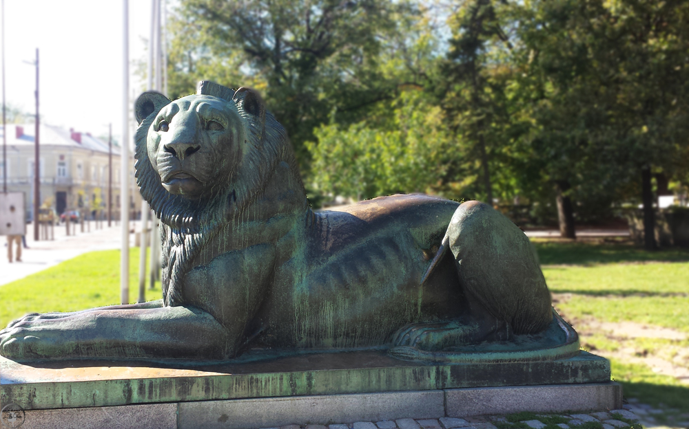 Lion - the national symbol of Bulgaria