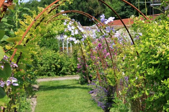 Chartreuse Neuville - jardin vertical