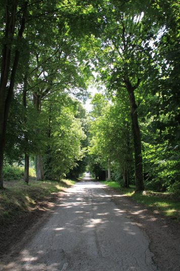 Chartreuse Neuville - allee