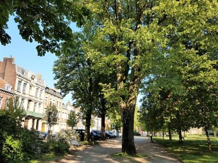 Toucoing centre - parc Victoire