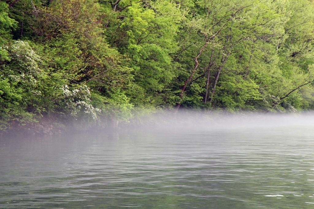 lake fog