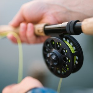 Fly fishing Lake Taneycomo