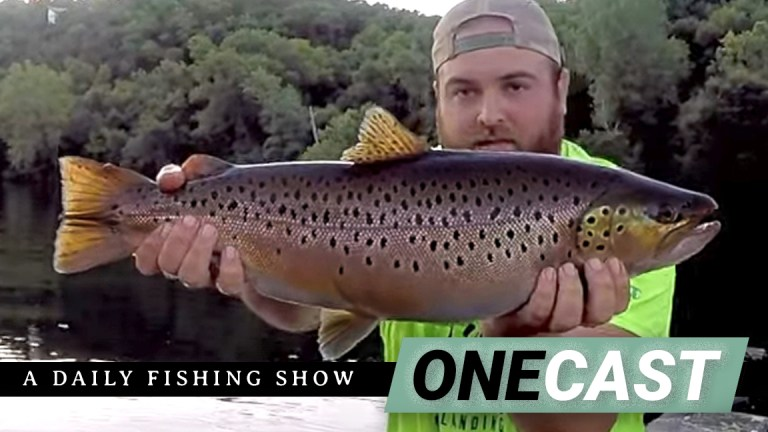 One Cast