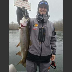 Matt Kindall rainbow trout