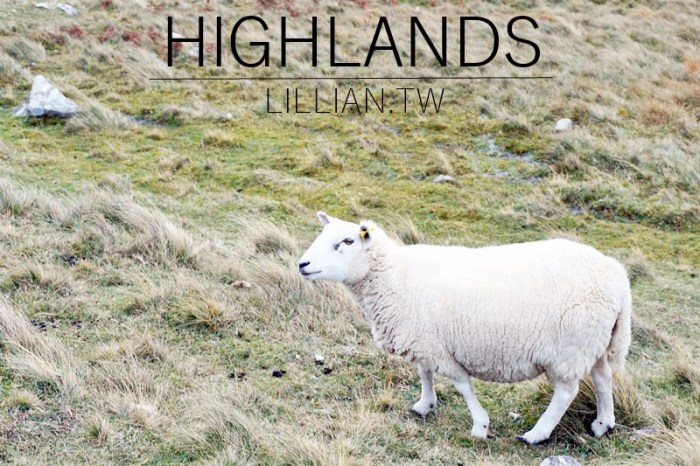 2021蘇格蘭高地Highlands|黑面羊、尼斯湖水怪、威士忌三天兩夜冒險之旅