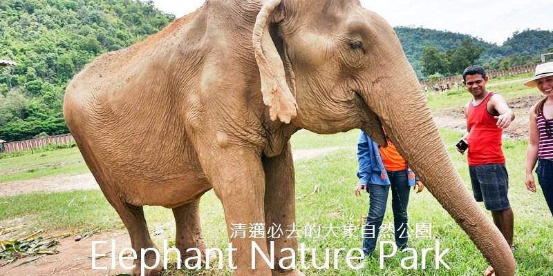 清邁大象自然公園 Elephant Nature Park門票、Tour,清邁一定要去的地方