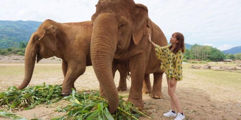 【清邁必去景點】清邁大象自然公園,再次回到這充滿微笑的自由樂園。