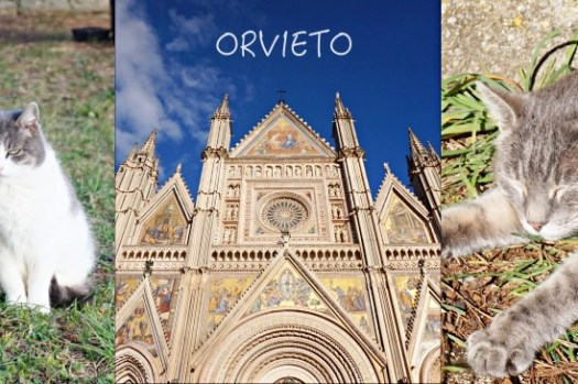 【義大利Orvieto一日遊】山城景點行程、天空之城交通、歷史、住宿,火山上的貓咪天堂。