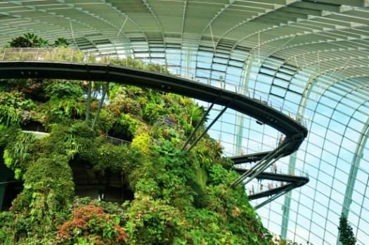 新加坡景點|濱海灣花園門票交通、花穹霧林冷室、燈光秀時間,懶人攻略