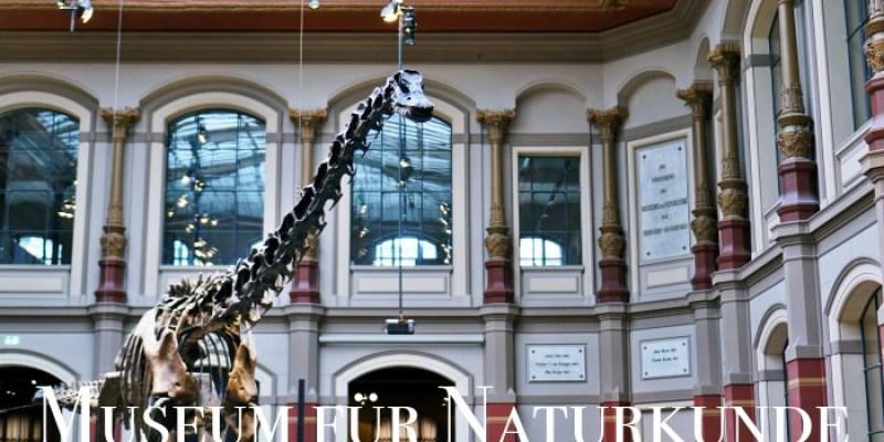 【柏林景點】自然博物館Naturkundemuseum營業時間、門票、交通