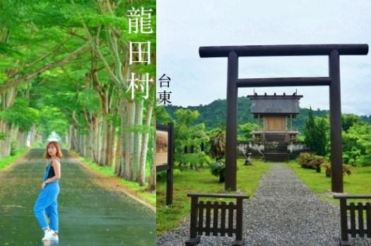 台東龍田村一日遊 鹿野日本神社、龍田綠色隧道、單車路線景點、住宿推薦