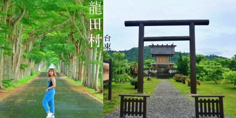 台東龍田村一日遊|鹿野日本神社、龍田綠色隧道、單車路線景點、住宿推薦