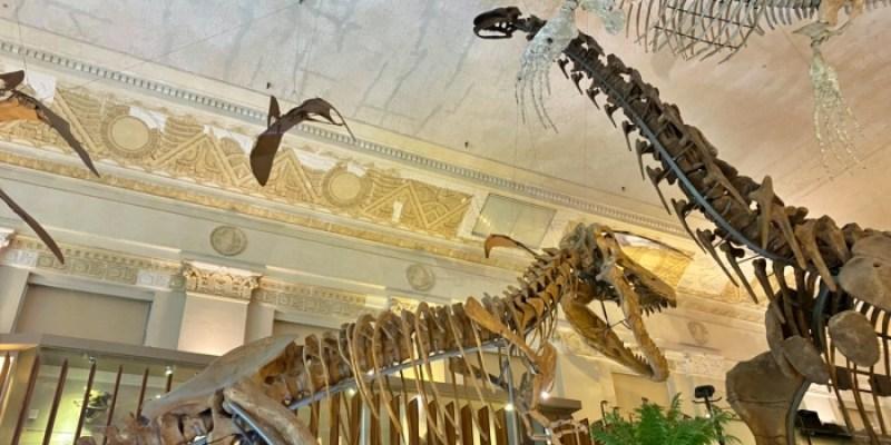 台北博物館|國立臺灣博物館本館看歷史,土銀古生物館看恐龍