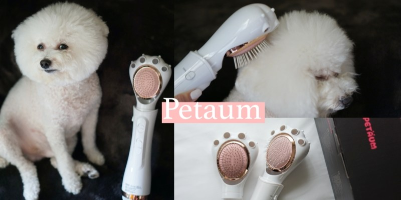狗狗用品|Petaum寵物專用梳毛吹風機,吹乾去結不再像打仗一樣!