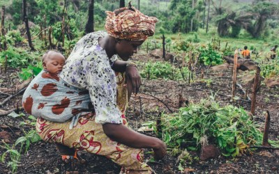 Can Agroecology Save Our Communities and Our Planet?