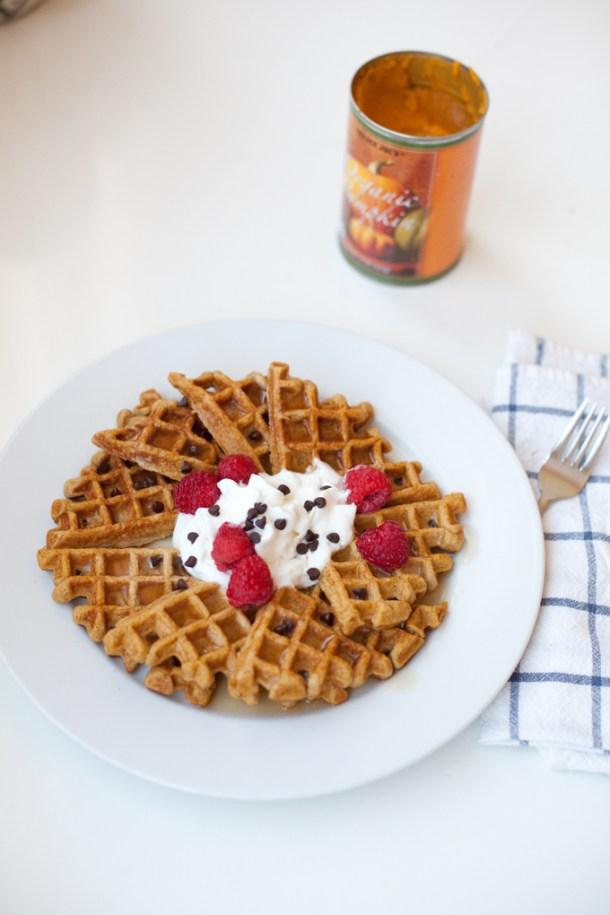Macro Friendly Pumpkin Protein Waffles www.lillieeatsandtells.com