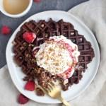 Kodiak and Lil Buff Chocolate Waffles www.lillieeatsandtells.com