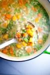 Pot of veggie chicken soup