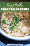 This creamy buffalo chicken is good over and over again! www.lillieeatsandtells.com