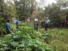 Workshop at Lillie House Permaculture