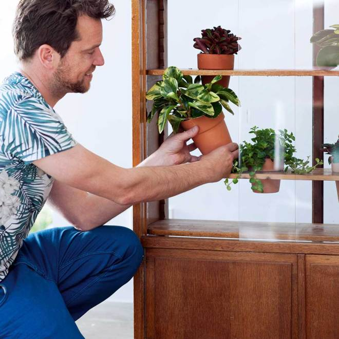 Pflanze-des-Monats-DIY-5