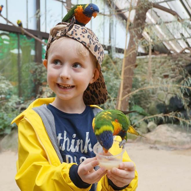 Weltvogelpark Walsrode / Lilli & Luke