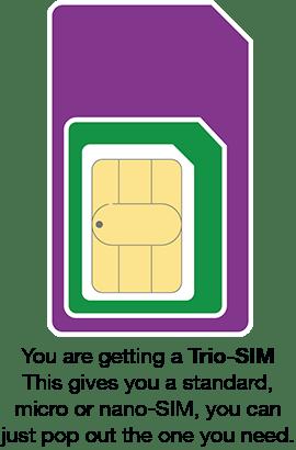 8903526219806