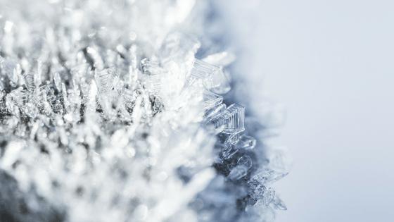 Week 39 - Cold