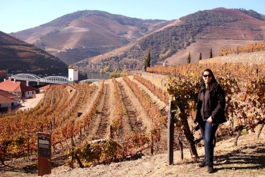 valle douro visita cantine