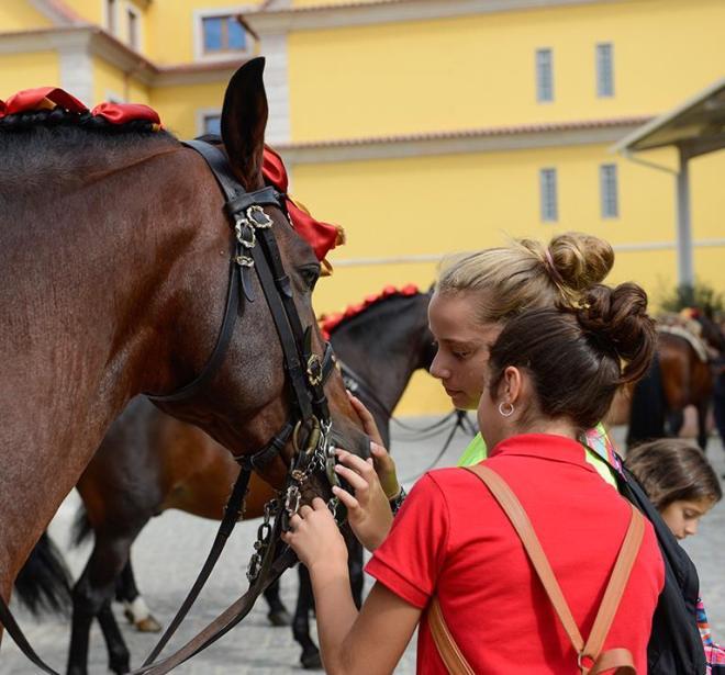 scuola equitazione lisbona