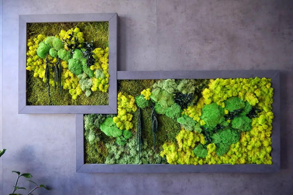 Tableaux en végétal stabilisé