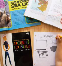 Printable Biography Worksheet: Preschool Social Studies Activity - Lil Mama  Bear Blog [ 2560 x 1707 Pixel ]