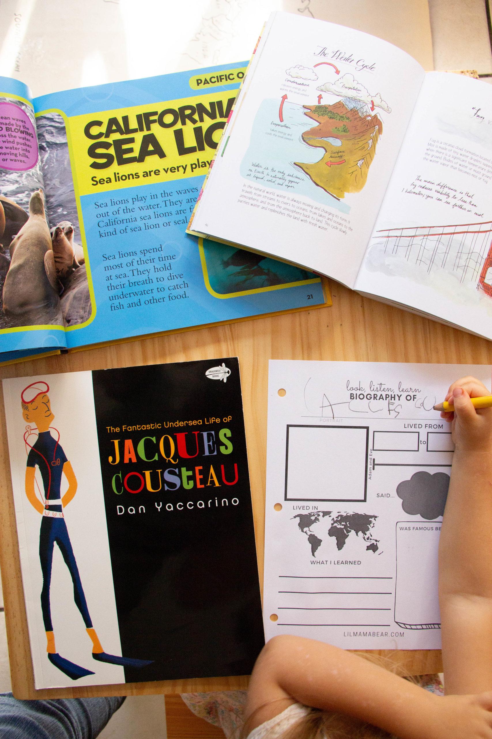 hight resolution of Printable Biography Worksheet: Preschool Social Studies Activity - Lil Mama  Bear Blog