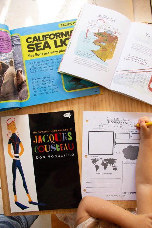small resolution of Printable Biography Worksheet: Preschool Social Studies Activity - Lil Mama  Bear Blog